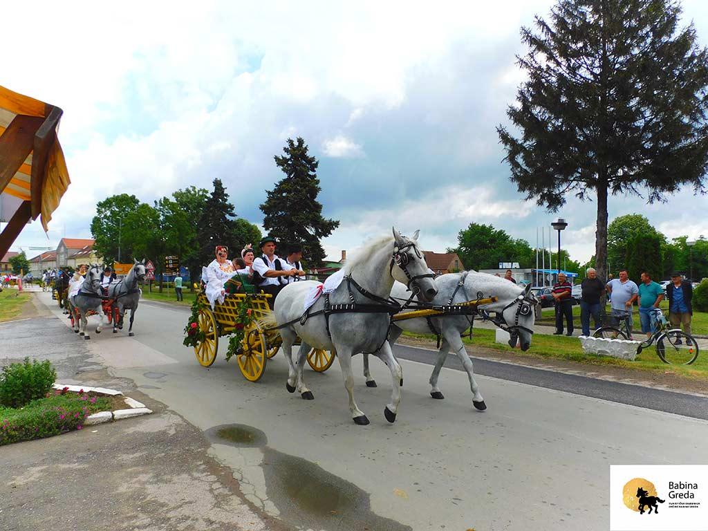 Konji bijelci